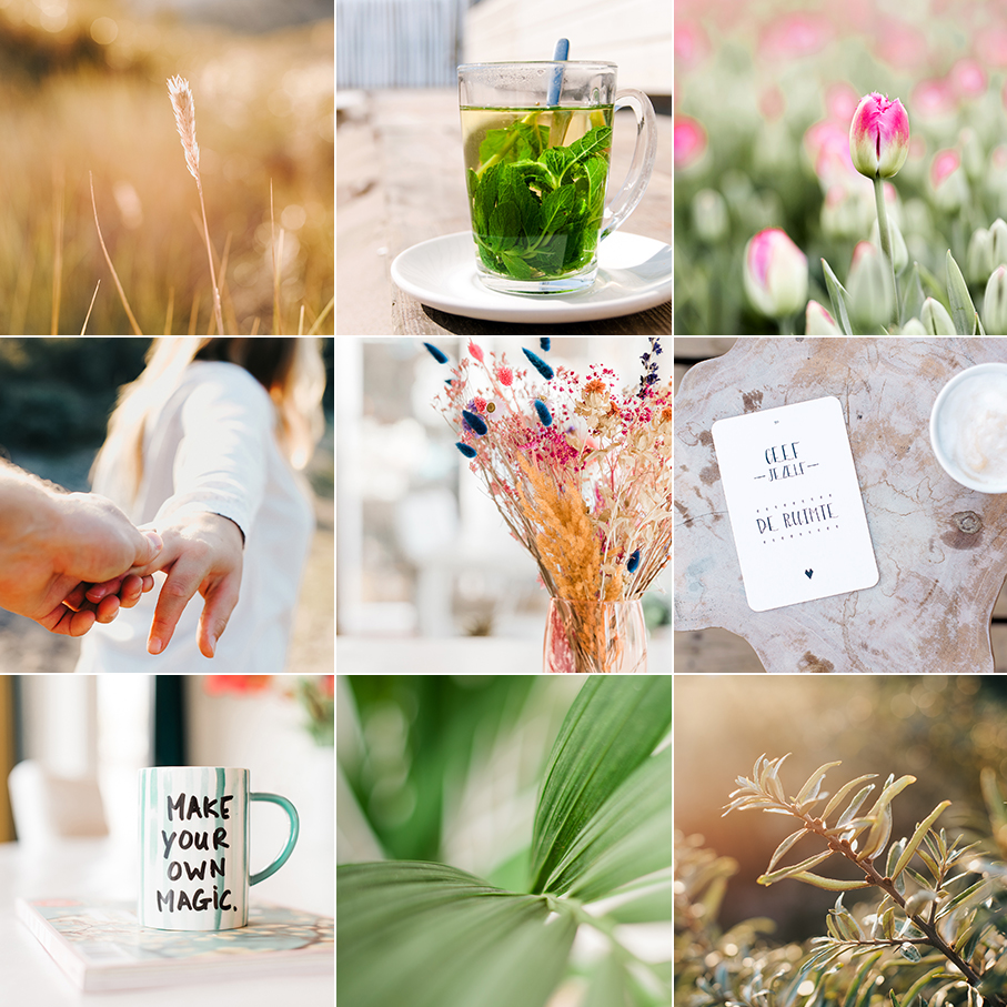 Beeldcollectie - Lia Remmelzwaal Fotografie - Personal Branding